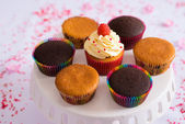 Plate with cupcakes — Stock Photo