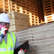 Stock wood pallet and worker — Foto de Stock