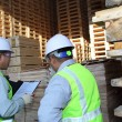 Two workers talking beside on stacking pallet — Stock Photo #16764215