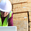 Construction workman - Stock Photo