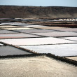 Stock Photo: Salt works