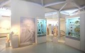 Archelogical Museum Thassos — Stock Photo
