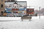 Burzy śnieżnej w buden powell parku — Zdjęcie stockowe