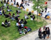 Mensen op gras — Stockfoto