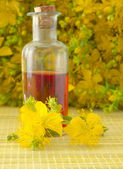 St john''s wort — Stock Photo