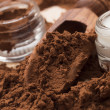 cocoa powder&quot — Stock Photo