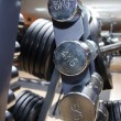 Metal barbells — Stock Photo