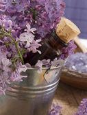 Blommor och en flaska i en hink — Stockfoto