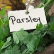 Parsley spice — Stock Photo