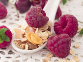 Musli with fresh raspberries — Stock Photo
