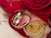 Wedding rings with roses - vintage arrangement — Stockfoto