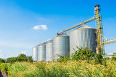 Factory manufacture animal feed with blue sky — Stock Photo