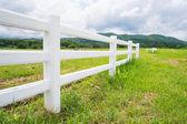 Clôture dans le champ de la ferme avec nuageux — Photo