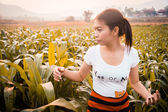Woman in field with sunlight — Stock Photo