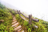 Fence and pathway on moutain — Stock Photo