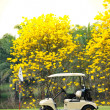 Stock Photo: Golf club car : morning feel