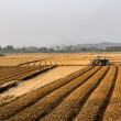 Agricultural fields — Stockfoto #40600625