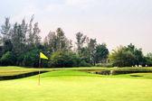 Zielony golf — Zdjęcie stockowe