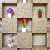 Shelf wall — Stock Photo