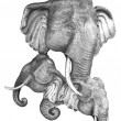Stock Photo: Elelphant Fine art