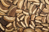 Cross section wood — Stock Photo