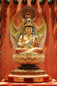 The statue of Buddha, Chinese Buddha Tooth Relic. — Стоковое фото