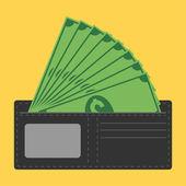 Show money in wallet — Stock Vector
