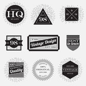 Vintage labels collection,design template — Stock Vector