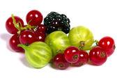 Fresh berries isolated — Stock Photo