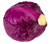 Purple cabbage isolated on white background — Stock Photo