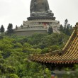 Tian Tan Buddha - The worlds's tallest outdoor seated bronze Bud - Stock Photo