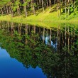 Stock Photo: Reflection of lake in Pang Ung Forestry Plantations, Maehongson