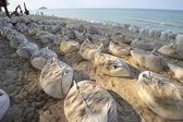 Sand bags along the beach in South of Thailand to protect from — Stock Photo