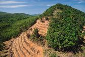 Vernietiging van het regenwoud in thailand formulier luchtfoto — Stockfoto
