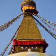 Bodhnath Stupa in Kathmandu, Nepal. — Stock Photo #25389287
