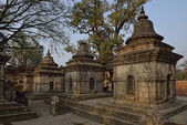 Pashupatinath Temple one of the most significant Hindu temples, — Stock Photo