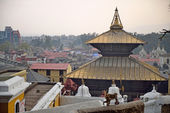 Pashupatinath Temple one of the most significant Hindu temples, — 图库照片