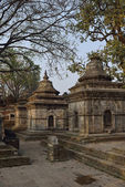 Pashupatinath Temple one of the most significant Hindu temples, — Stockfoto