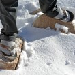 Stock Photo: Sandal on snow