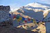 Prayer flag and Shanti Stupa, Leh, Ladakh, India, — Stock Photo