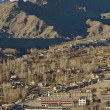 Leh city is located in IndiHimalayas at altitude of 35 — Stock Photo #37940863