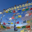 Prayer flag row on bridge cross over Indus River, Ladakh, India — Stock Photo