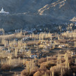 Leh city and Shanti Stupa, Leh, Ladakh, India, — Stock Photo