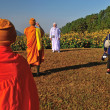MAEHONGSON, THAILAND- NOVEMBER 22: unknown monk walking in Tung — Stock Photo #38375429