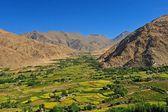 Beautiful scenic view of Leh valley, Ladakh range, Jammu & Kashmir, Northern India — Stock Photo