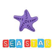 Color children's sea star plasticine on a white background — Stock Photo