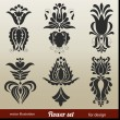Floral Decoration Elements — Stok Vektör #14004778