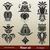 Floral Decoration Elements — Vecteur