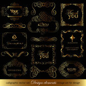 Elementos de design caligráfico para design — Vetorial Stock