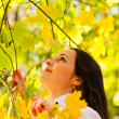 Woman holding on to autumn bush — Stock Photo